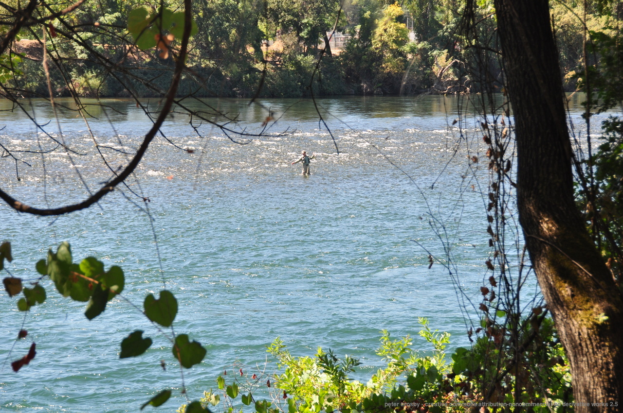 Redding california it s close to a lot of other better for Fishing spots in sacramento