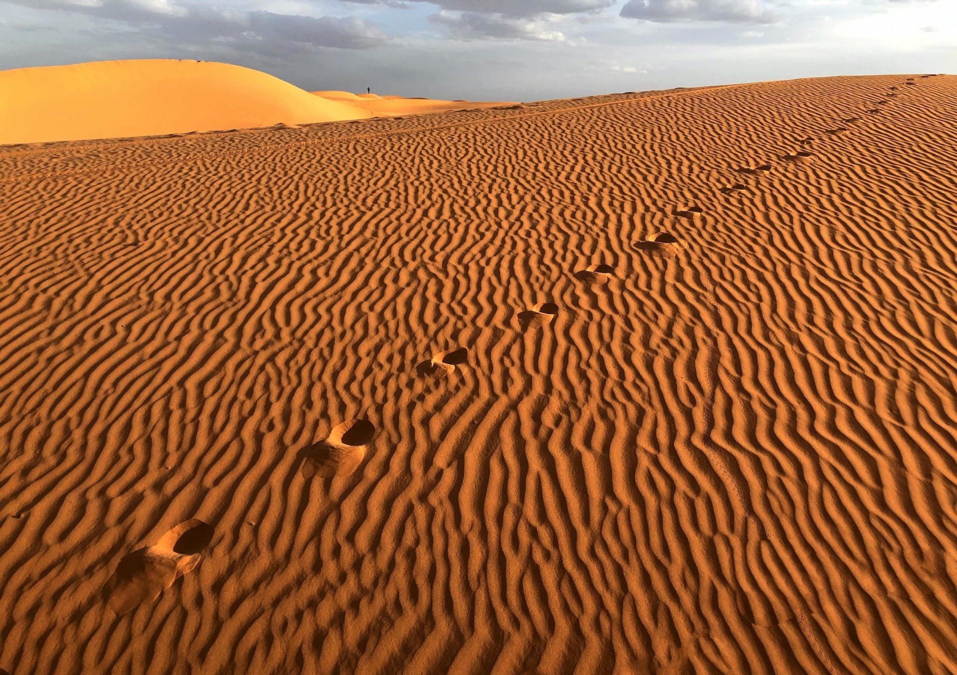 The Sahara Desert is hot, dry, and sandy AF.